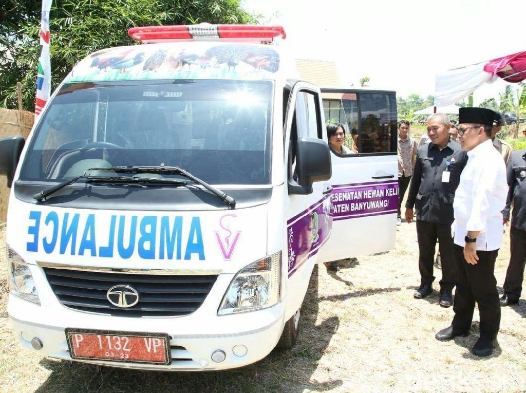 Di Banyuwangi, Ada Ambulans Khusus Hewan Peliharaan dan Ternak