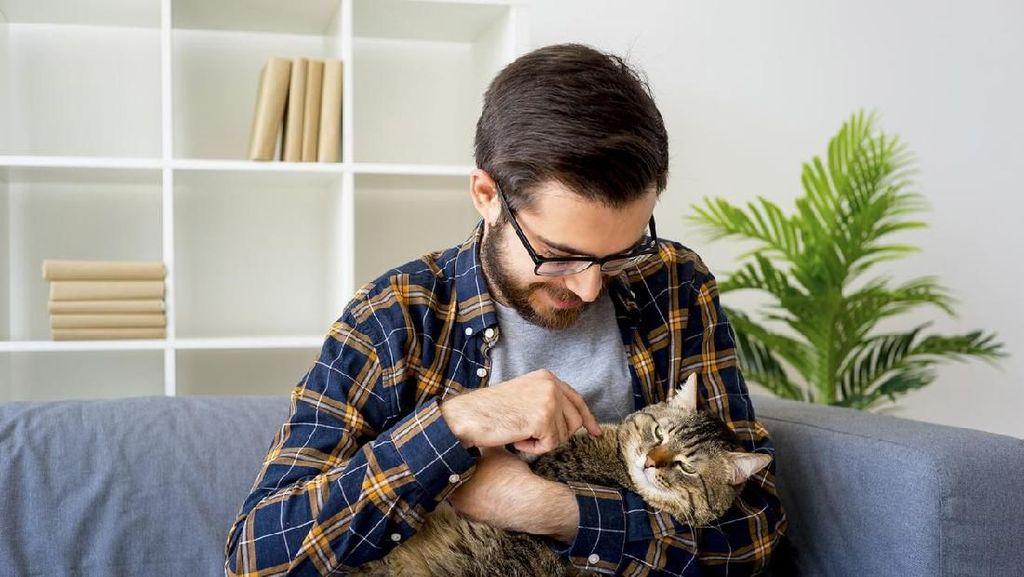 Prabowo Suka Kucing, Ini 7 Sifat Pria Penggemar Kucing yang Kamu Belum Tahu
