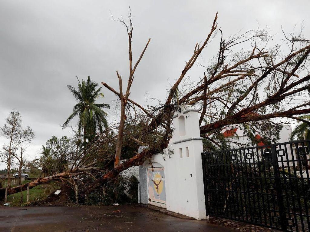 Rumah Rusak-Pohon Tumbang, Begini Dampak Badai Willa di Meksiko
