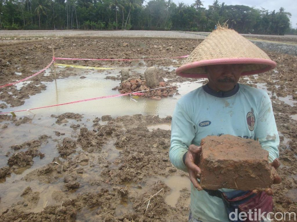 Garap Sawah, Warga Cilacap Temukan Batu Bata Kuno Ukuran Jumbo