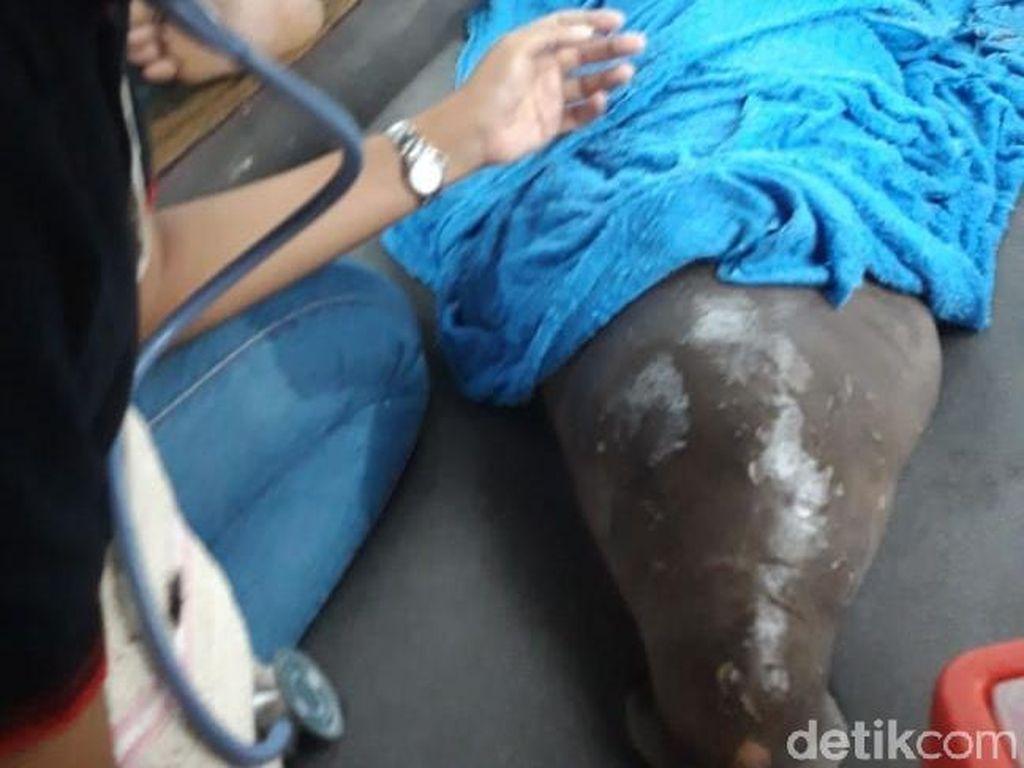 Bayi Dugong Terjerat Jaring Nelayan di Tanjung Lesung Banten
