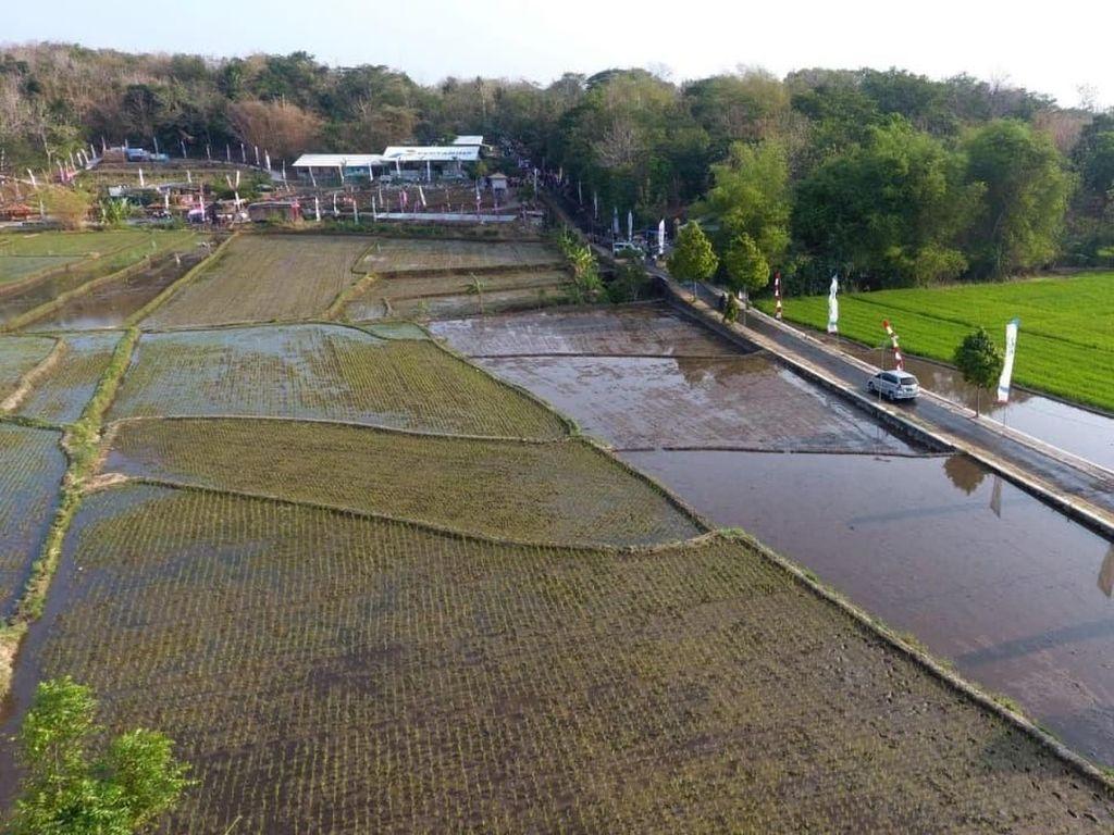 Lahan Kritis di Boyolali Disulap Pertamina Jadi Agrowisata