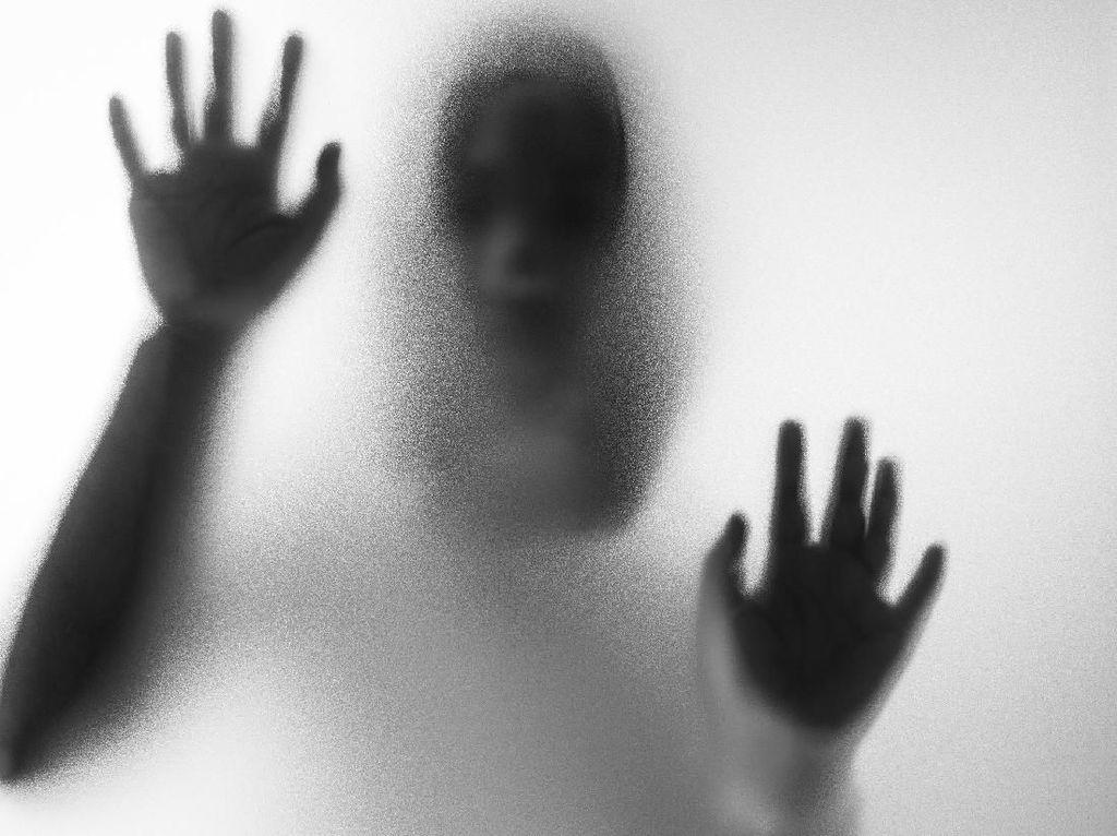 Viral Misteri KKN Desa Penari, Kenapa Cerita Horor Selalu Bikin Penasaran?