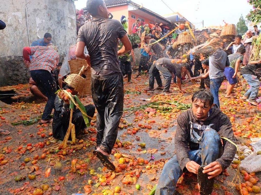 Keseruan Rempug Tarung Adu Tomat di Bandung Mirip Festival La Tomatina Spanyol