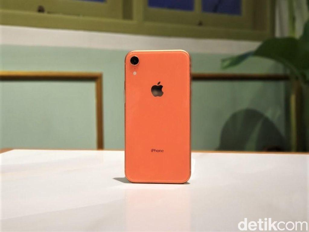 Ini Alasan Apple Batal Geber Produksi iPhone XR?