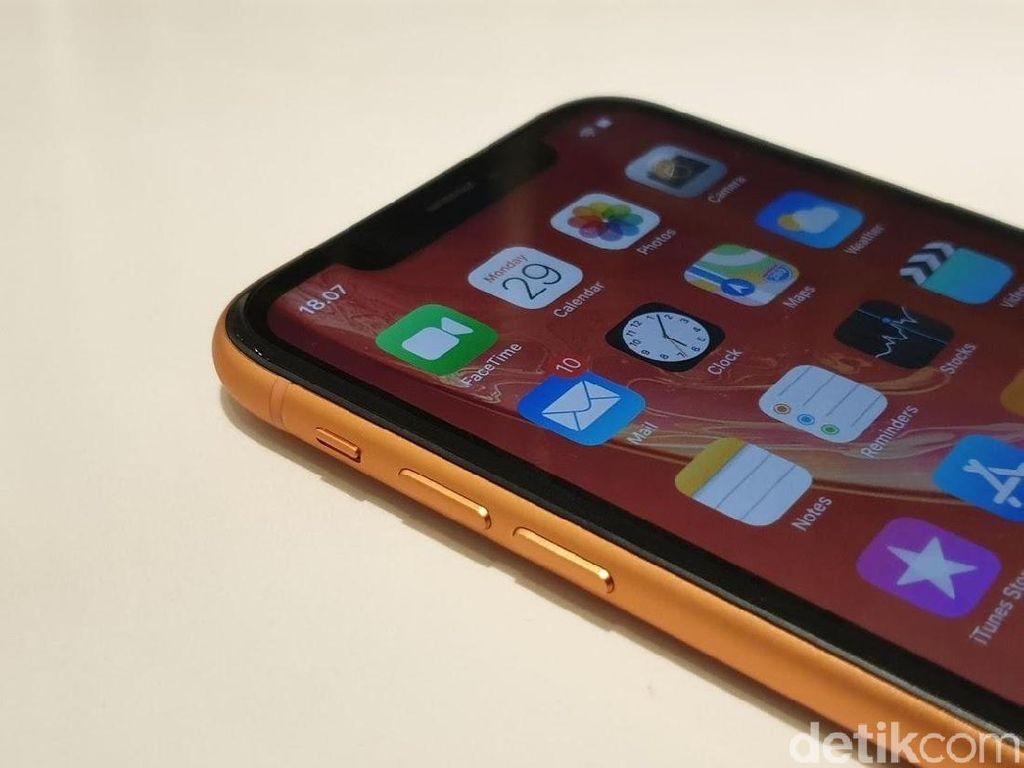 Suksesor iPhone XR Pakai Kamera Turunan iPhone XS?