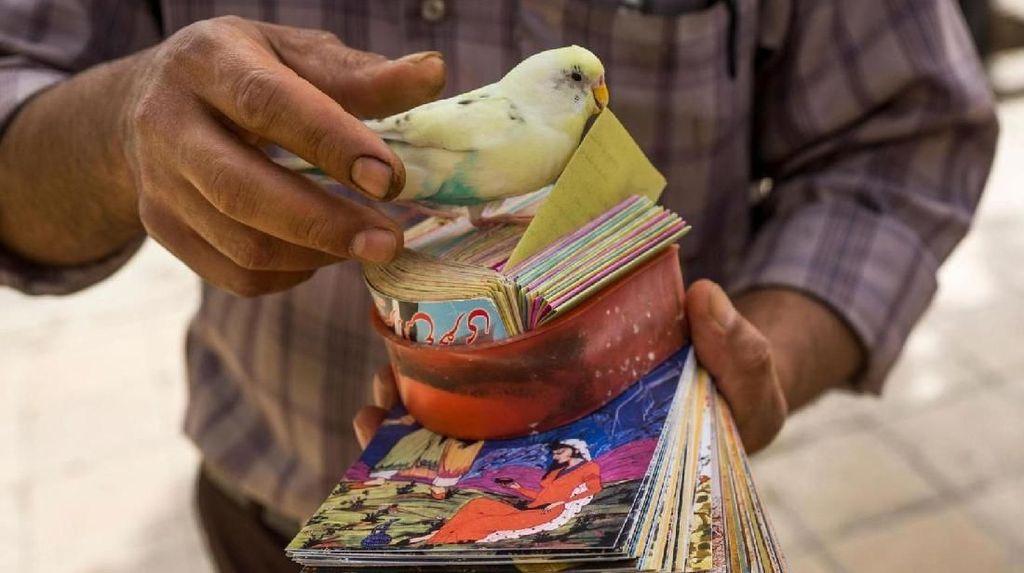 Sajak Keberuntungan dari Iran dalam Foto