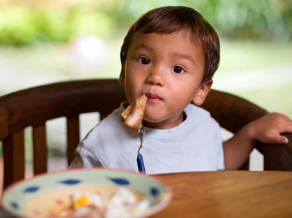 Kapan Waktu Tepat Mengenalkan Daging pada Bayi?