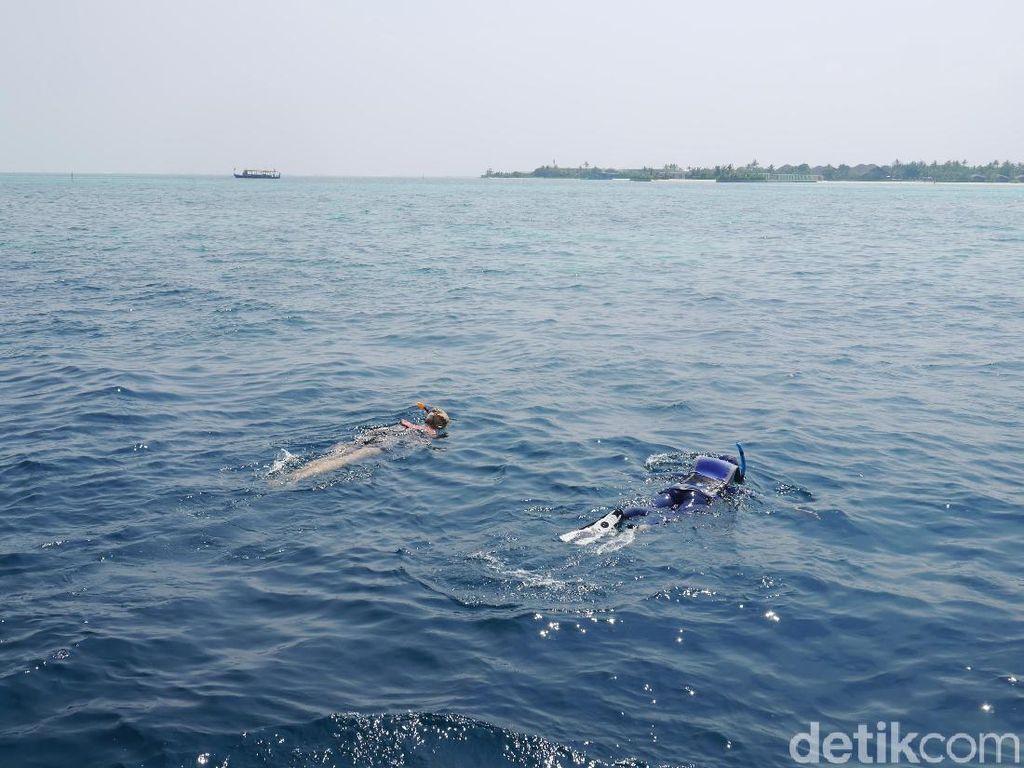 Asyik Snorkeling, Francisco Garcia Tewas Kena Baling-baling