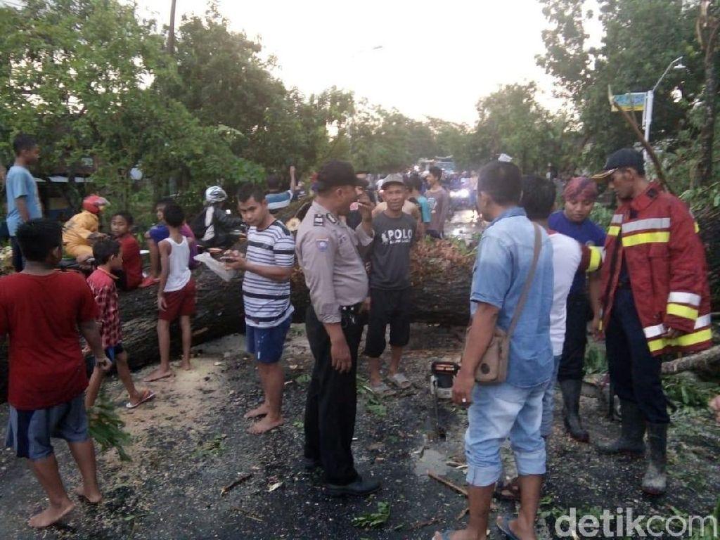 Puting Beliung Landa Bojonegoro, Rumah, Pohon dan Tower Roboh