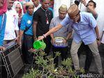 Tiba di Gorontalo, Sandiaga Ziarah ke Makam Kakek