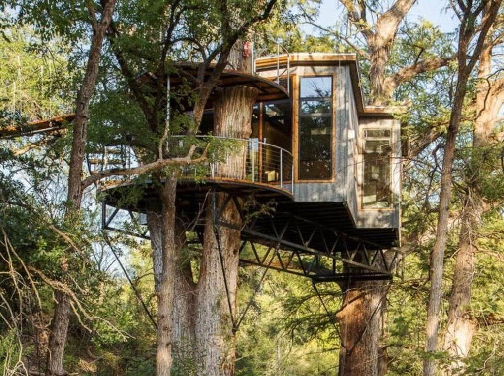 Ada Rumah Mewah Nangkring di Atas Pohon, Begini Jeroannya