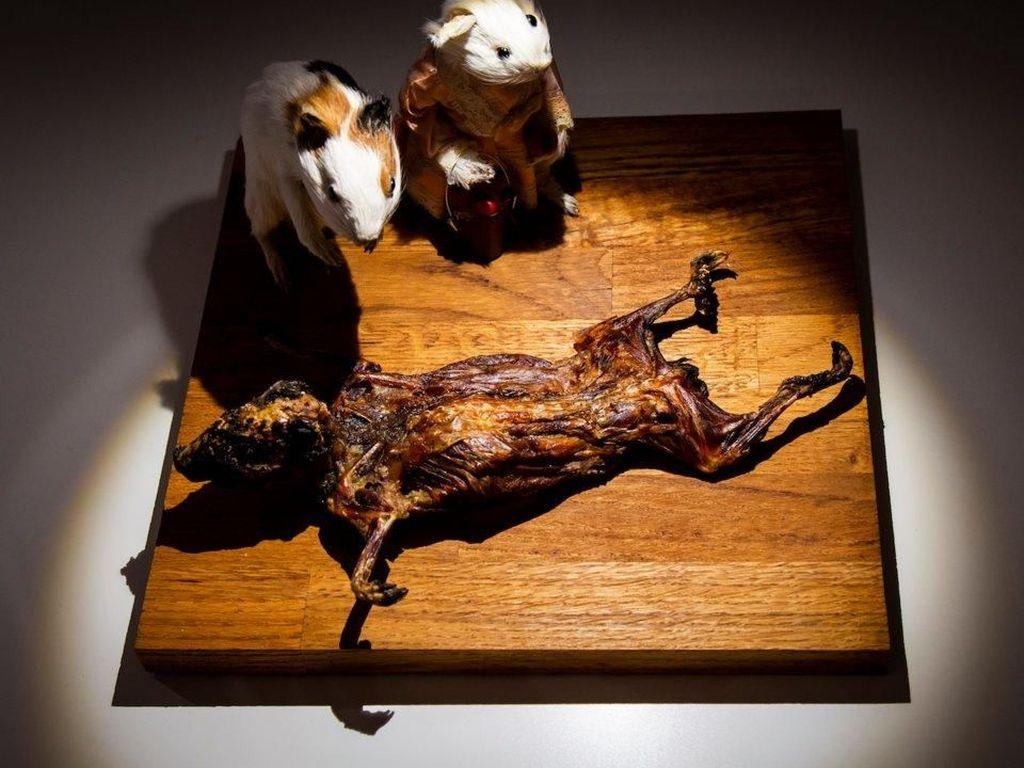 Hii... 10 Makanan Ini Paling Menjijikkan di Disgusting Food Museum