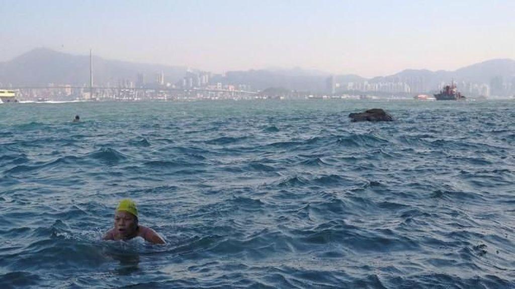 Foto: Komunitas Renang dengan Tempat Rahasia di Hong Kong