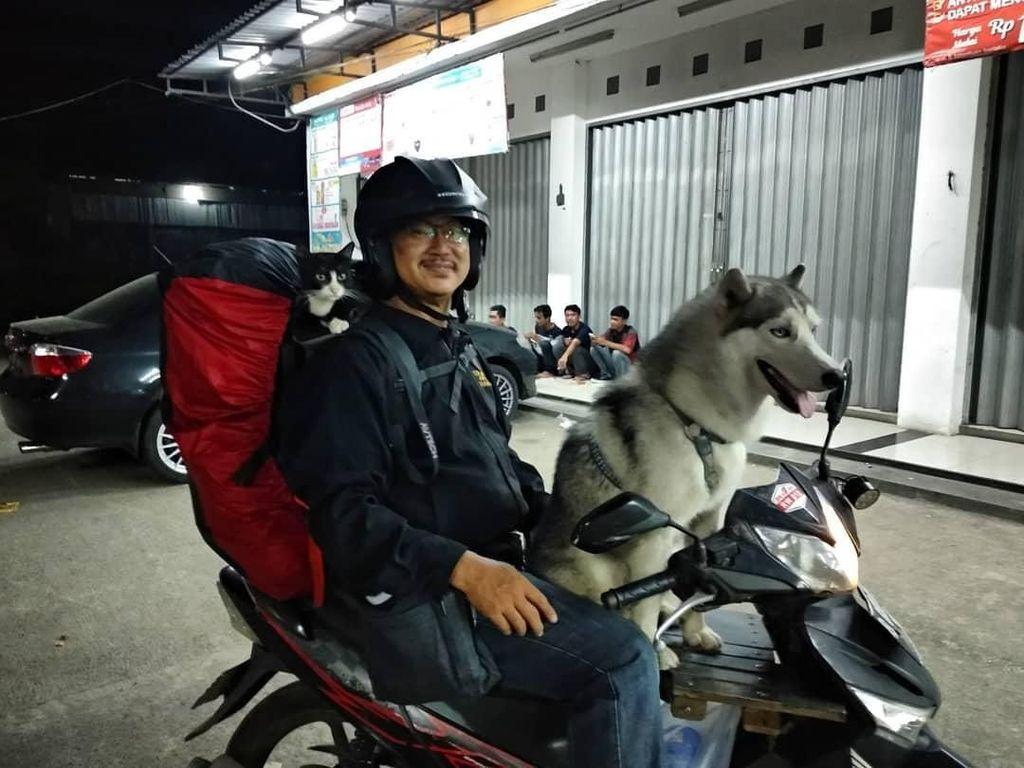 Kisah Anjing dan Kucing: The Motorcycle Diaries