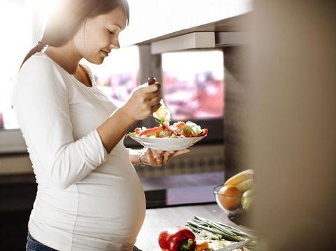 {SEO} Cara Mengatur Pola Makan Ibu Hamil dari Trimester 1 Hhngga 3