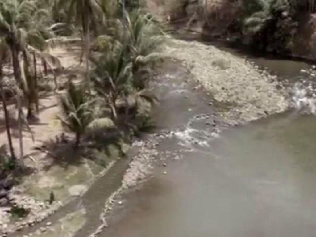 Bendungan Tertinggi di Indonesia akan Dibangun di Purworejo