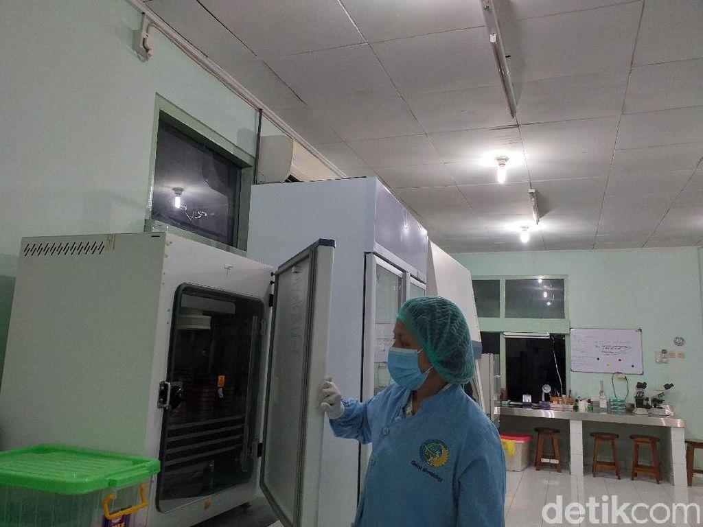 Laboratorium Canggih di RSUP Sanglah, Ada Ruang Isolasi untuk Wabah!