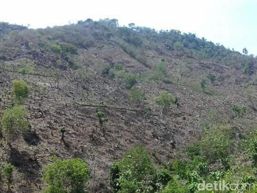 Perubahan Lahan di Geopark Tambora, Sumbawa