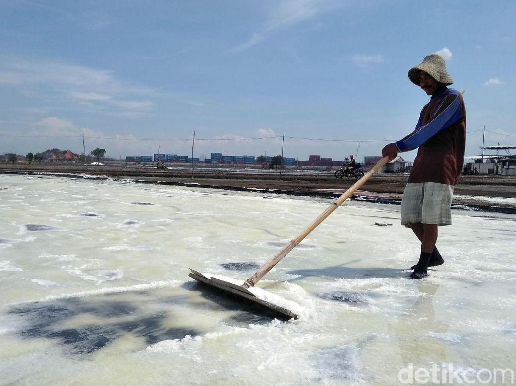 Pemerintah Siapkan 3 Lokasi Ladang Garam di Pulau Sumbawa