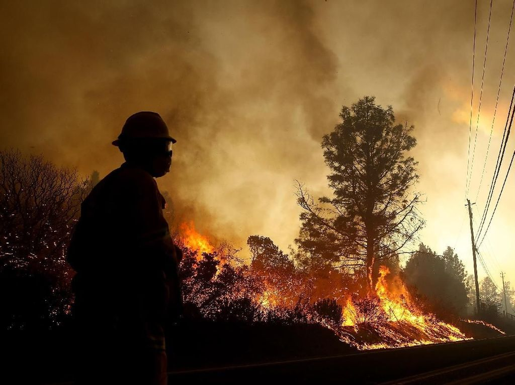 Kebakaran di California, Kim Kardashian hingga Lady Gaga Ikut Mengungsi
