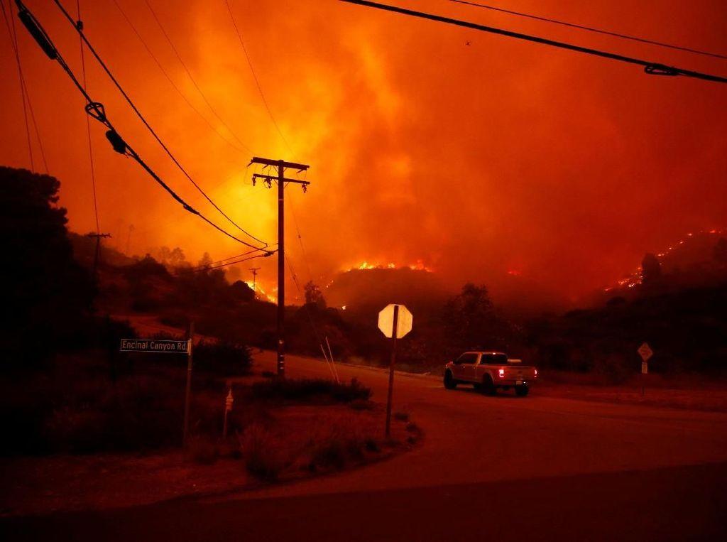 Korban Jiwa Kebakaran di California Utara Jadi 42 Orang
