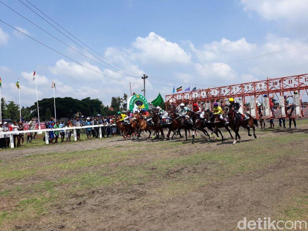 Serunya Kejuaraan Pacuan Kuda Jogja Derby 2018 di Bantul