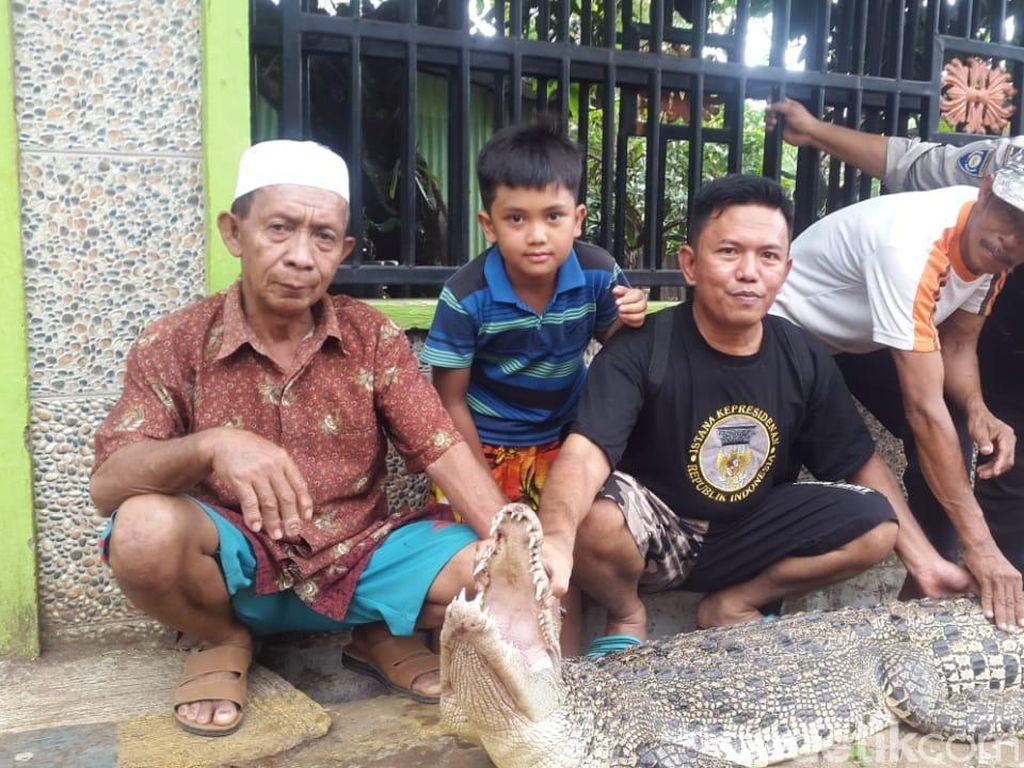 Warga Makassar Temukan Buaya Terperangkap Jaring Dekat PLTU