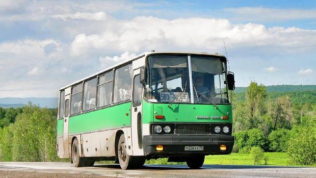 Metromini dan Jalan Panjang Bus Sedang di Ibu Kota (opening)