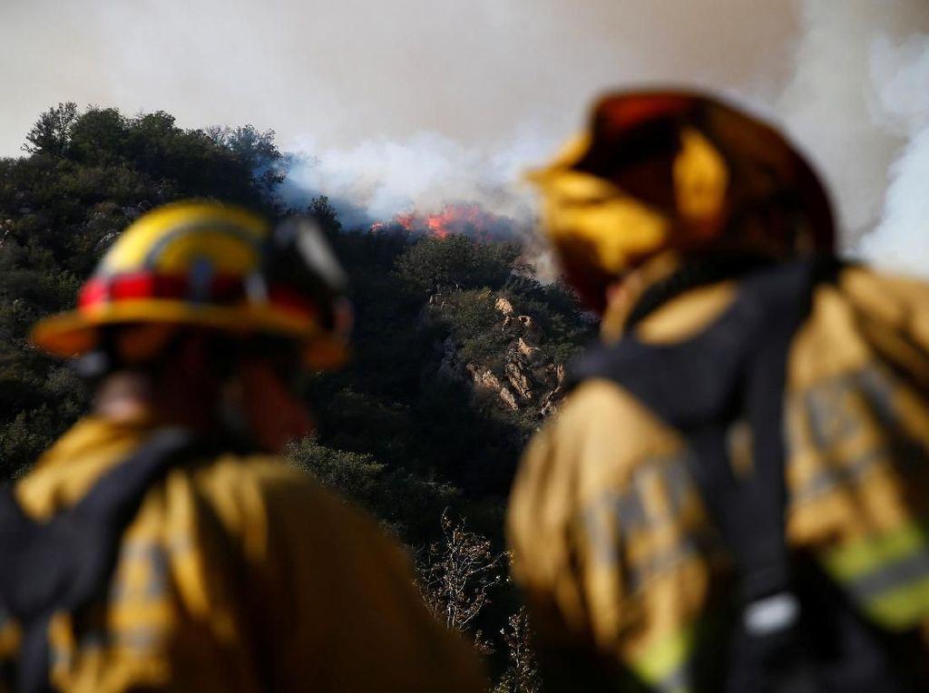 Kebakaran Mematikan California, 71 Orang Tewas, 1.011 Hilang