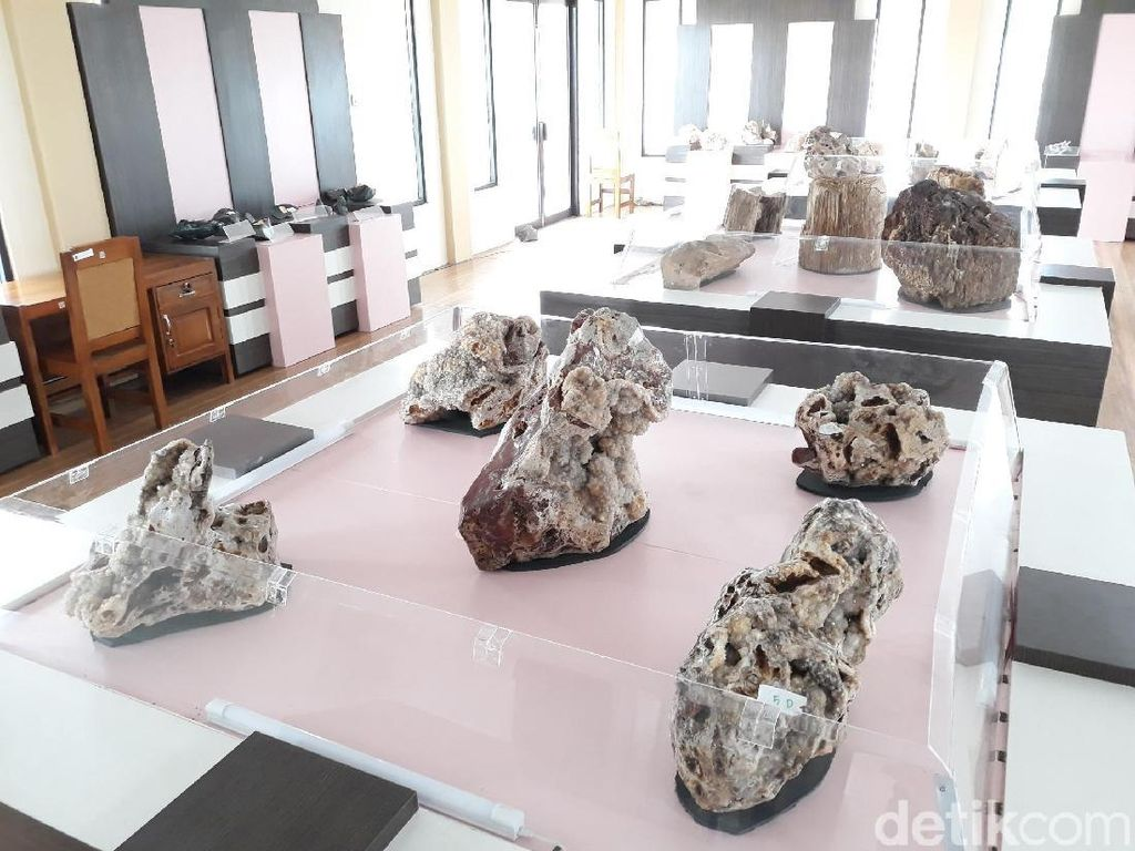 Ratusan Batuan Hingga Fosil Ada di Etalase Taman batu