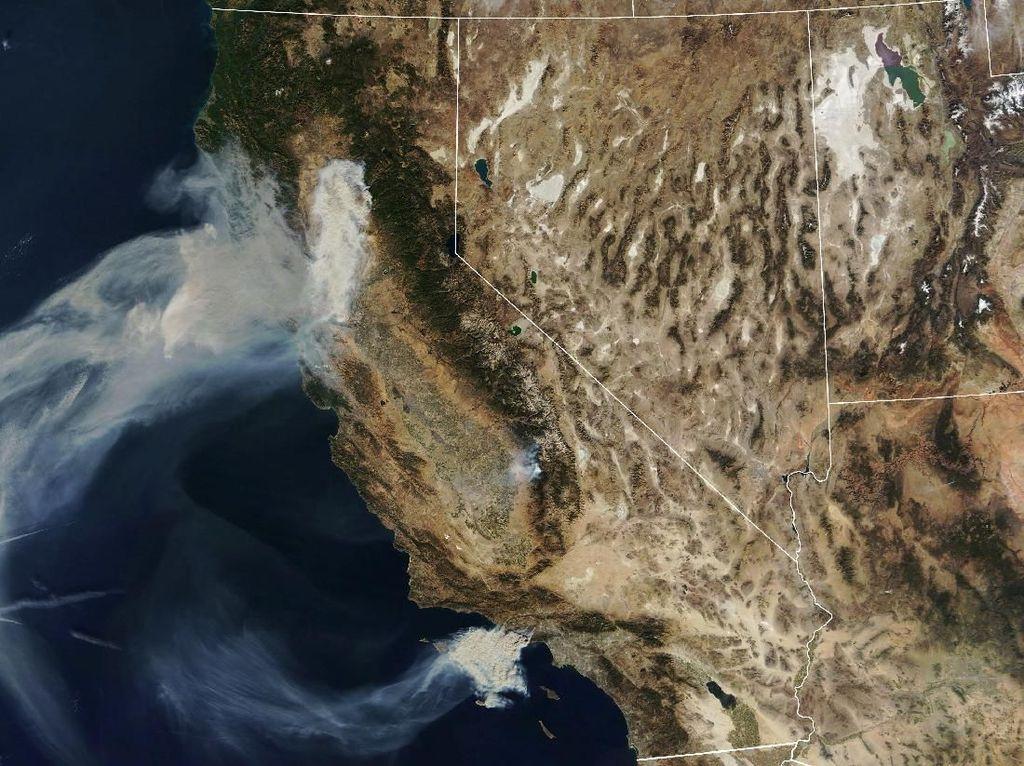 Lebih dari 600 Orang Hilang dalam Kebakaran Hutan di California