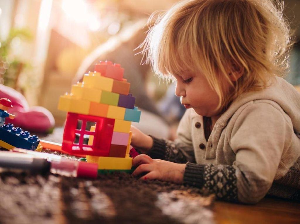 Manfaat Mainan untuk Perkembangan Otak Anak
