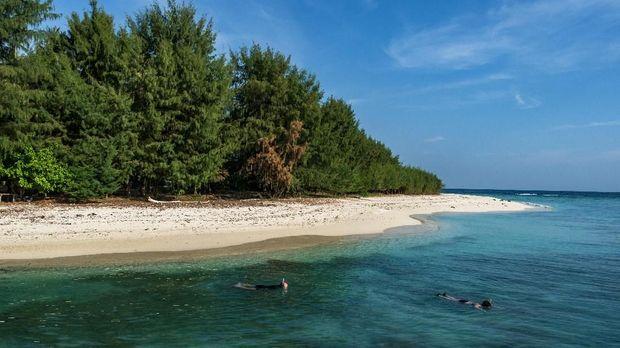 Wisatawan melakukan aktivitas selam permukaan di sekitar Pulau Cilik, Karimunjawa, Jepara, Jawa Tengah. ANTARA FOTO/Aji Styawan