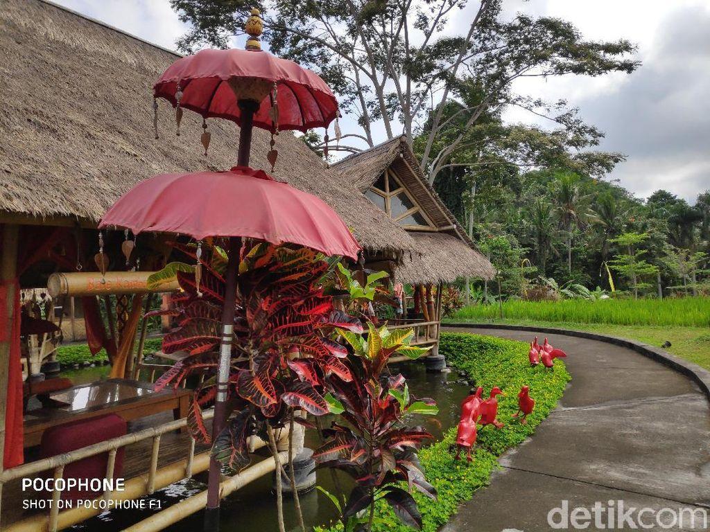 Menjajal Kamera Xiaomi Pocophone F1 di Pulau Dewata