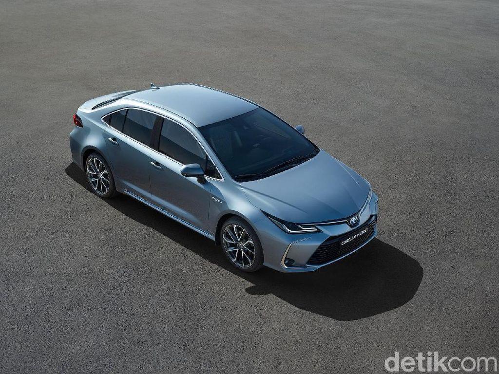 Suzuki Bakal Menjual Corolla Altis Tahun Depan