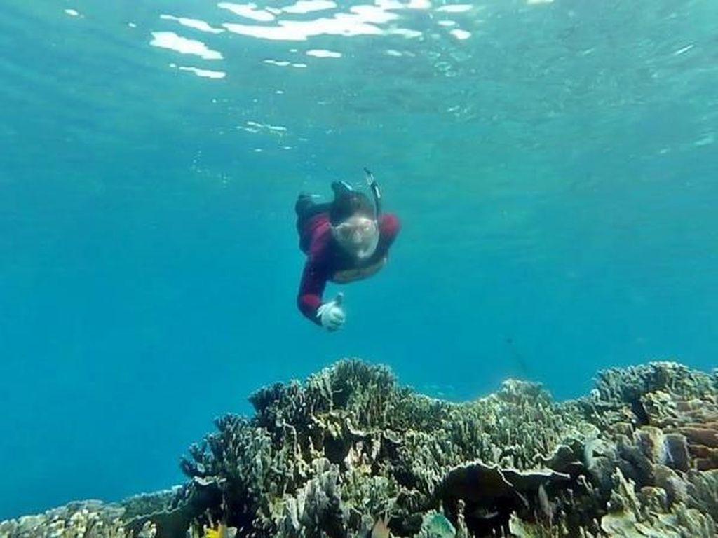 Bawah Laut Halmahera Selatan, Mantap Jiwa!