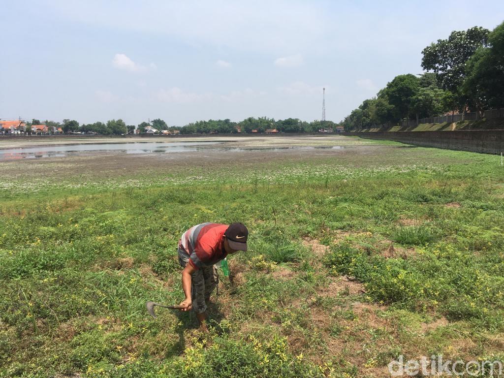 Airnya Mengering, Waktunya Kolam Segaran Dibersihkan