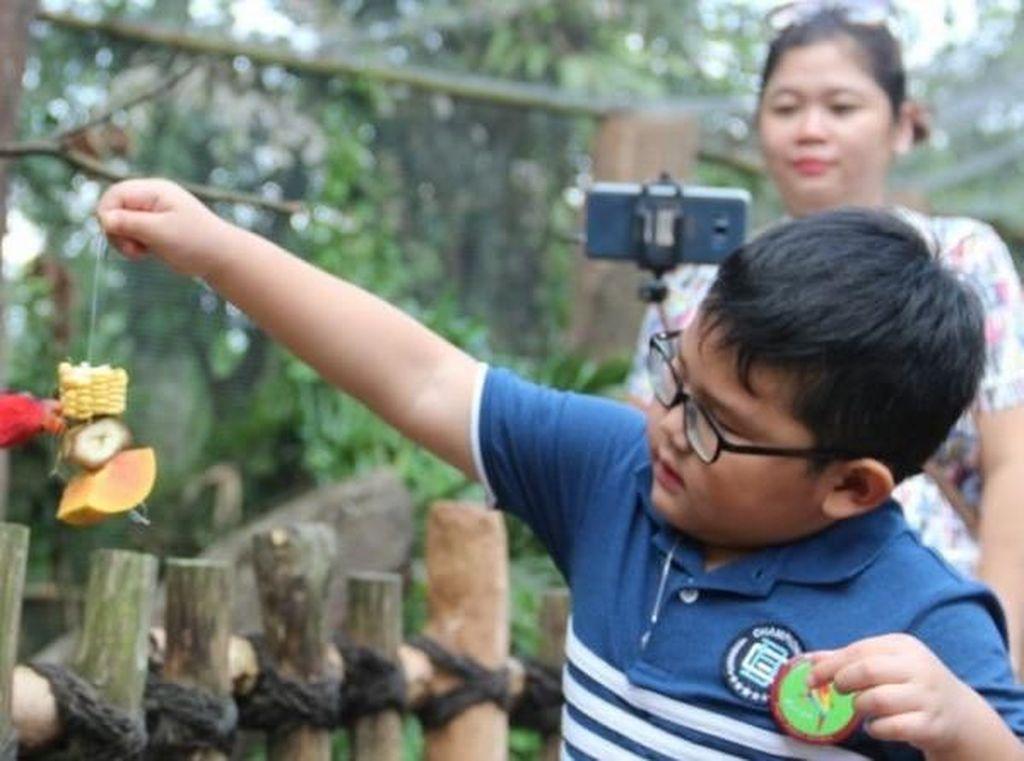 Harpitnas, Yuk Ketemu dan Main Bareng Satwa di Puncak Bogor
