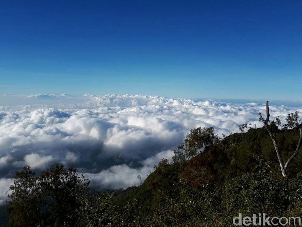 Ijen Ditutup, Sejumlah Wisatawan Mengalihkan Pendakian Di Gunung Rante