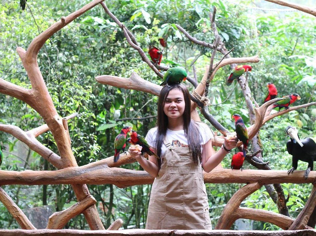 Liburan Seru, Selfie Bareng Ratusan Burung di Puncak