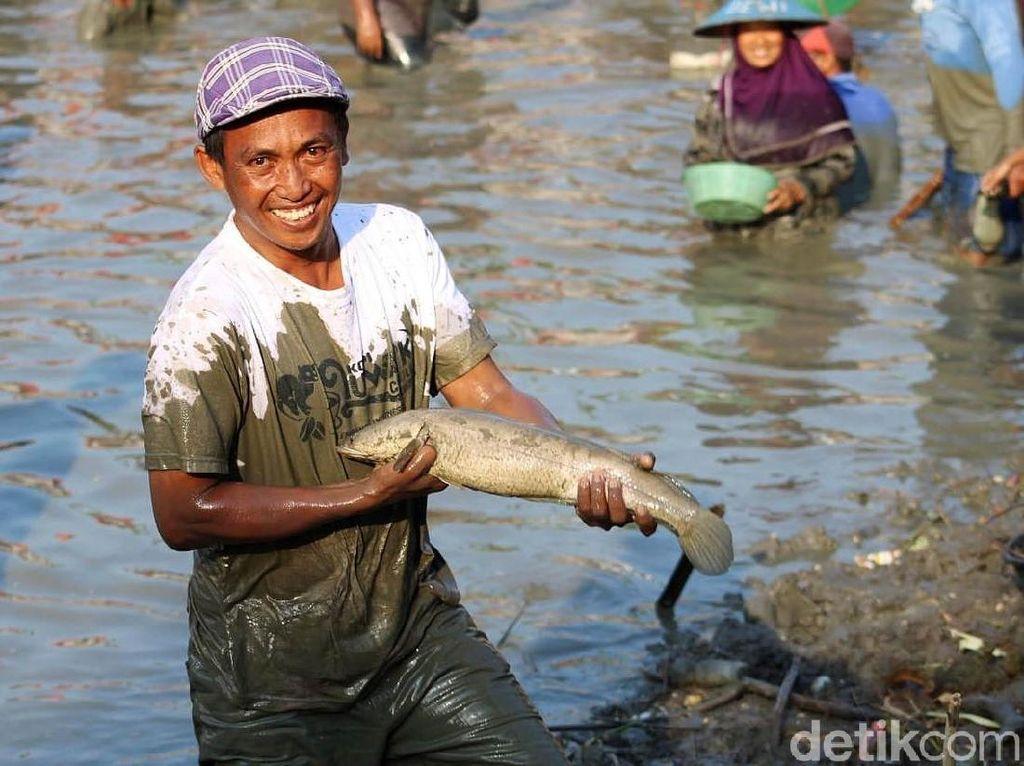 Serunya Warga Lamongan Berebut Tangkap Ikan di Peringatan Maulid Nabi