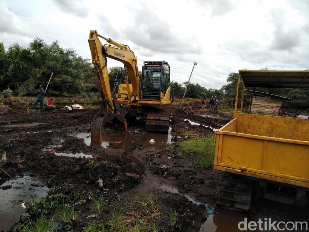 2 Alat Berat untuk Buka Lahan Sawit Ilegal di Riau Disita