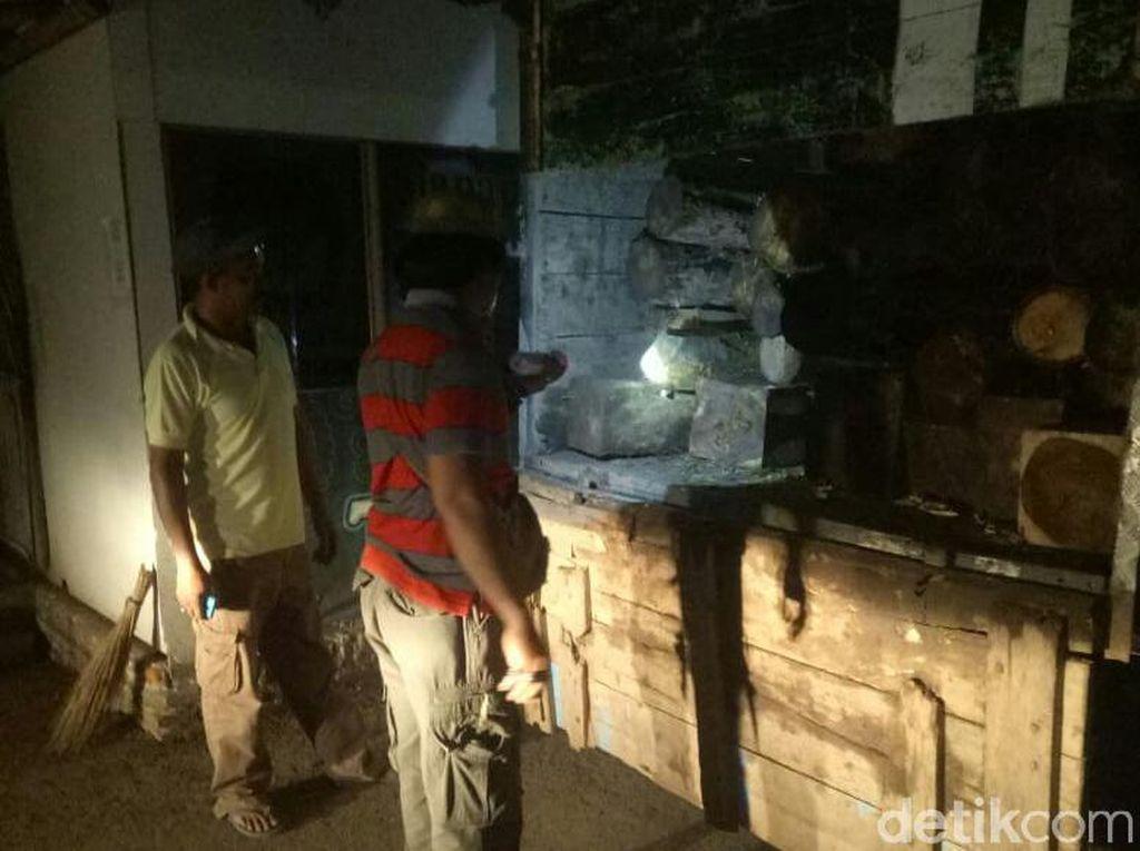 Diduga Angkut Kayu Hasil Curian, 2 Warga Bondowoso Diciduk Polisi