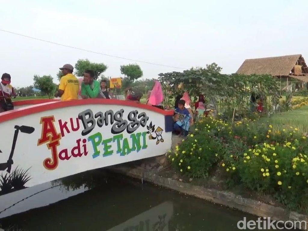 Lamongan Punya Desa Wisata Agro Kekinian