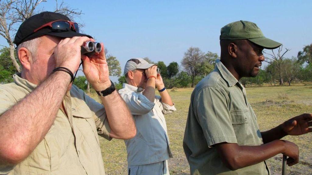 Foto: Jalan Kaki Membuntuti Singa di Afrika, Berani?