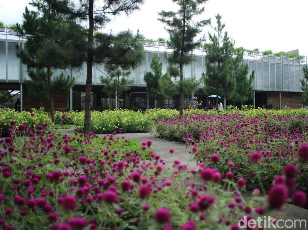 Foto: Pabrik Minyak Wangi Jadi Wisata Edukasi di Tawangmangu
