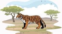 Suara Harimau Terdengar di Malam Hari, Warga di Jambi Tak Berani Berkebun