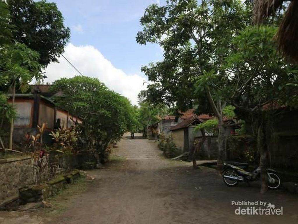Tak Ada Hari Nyepi dan Ngaben di Desa Terkuno Bali Ini