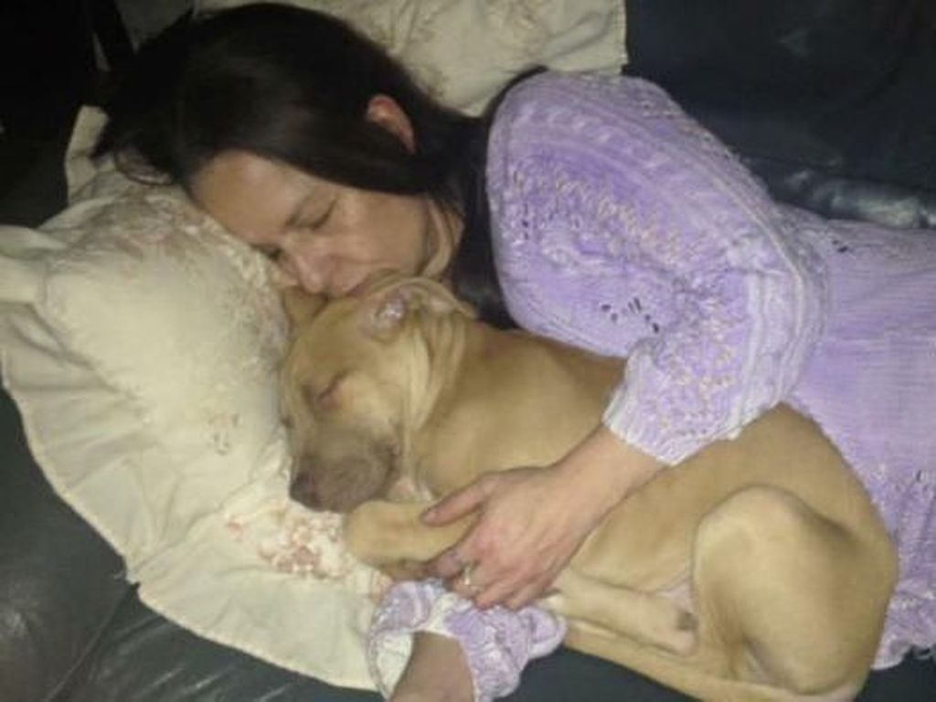 Lindungi Tamu, Wanita Ini Tewas Diserang Anjingnya Sendiri